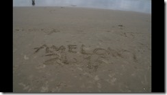 Ameland 2015-07-31 (1)